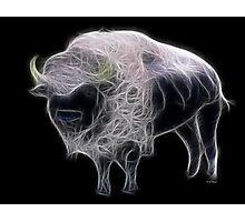 Medicine Wheel Totem Animals by Liane Pinel- White Buffalo Photographic Print