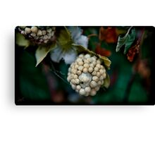 clustered close Canvas Print