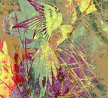 Parrot Colours. by Vitta