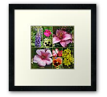 Lupin, Lilies, Geraniums and Pansies Collage Framed Print