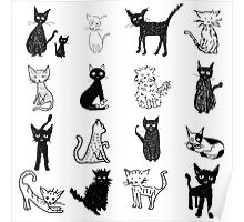 Cats, cats, cats. Poster