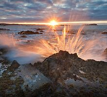Golden Spray.  by DaveBassett
