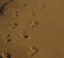 Footprints by Alison  Eno