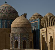Domes of Shah-i-Zinda  by Gillian Anderson LAPS, AFIAP