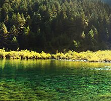 Picturesque Of Calm Water by Jennifer Lam