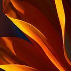 Flame 3. by Baska