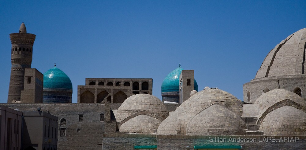 Bukhara rooftops by Gillian Anderson LAPS, AFIAP