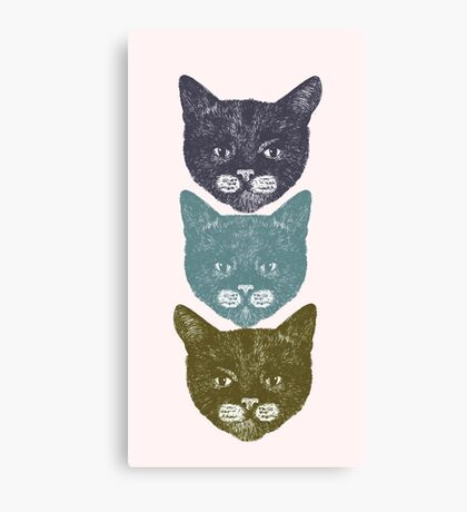 3 Kittens Canvas Print