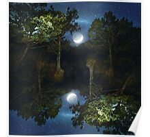 Moonset in coniferous forest Poster
