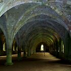 Vaults at Fountains Abbey by hootonles