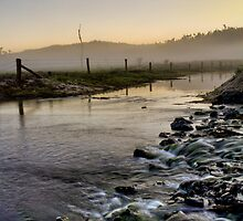 Misty Morning Waters - Etty Bay NQ by Giovanna Devlin