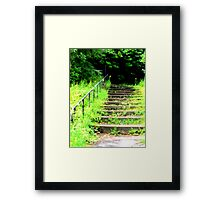 Step into the darkness  Framed Print