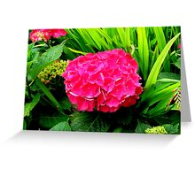 Brightfully Pink  Greeting Card