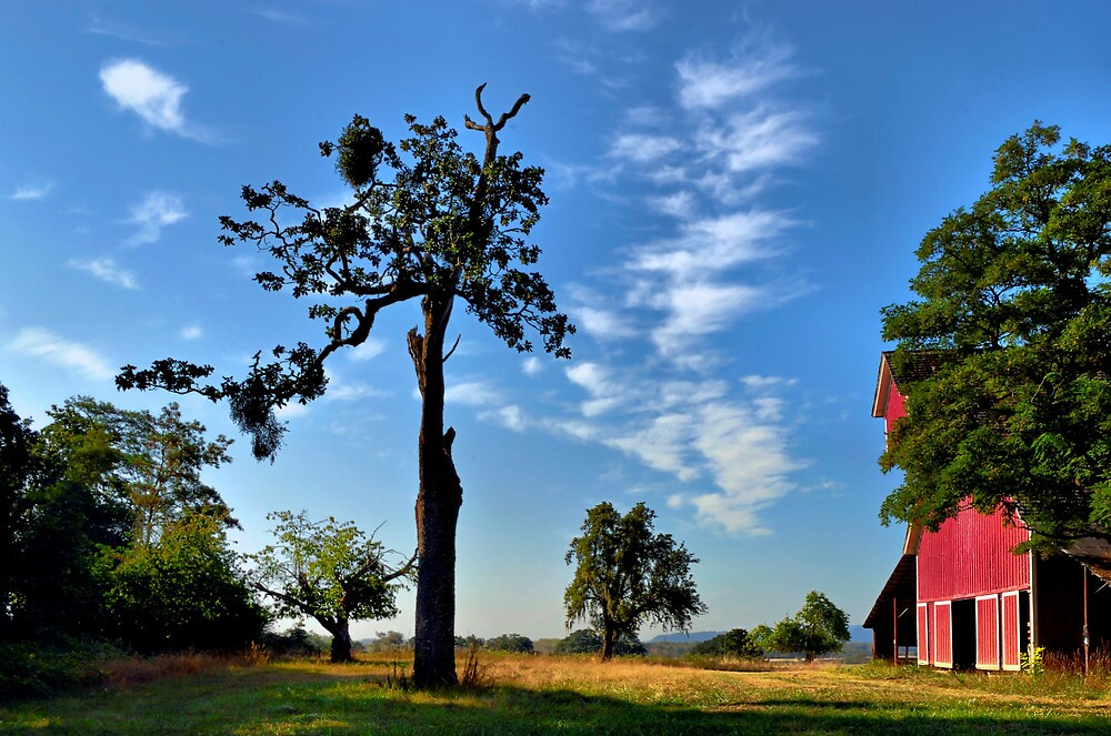 Old Red Barn Finley Refuge - USA - by Charles & Patricia   Harkins ~ Picture Oregon