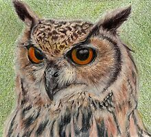 Eagle owl by Sharon Herbert