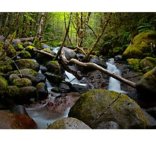 Set Me Free - Boulder Creek - USA - Photographic Print