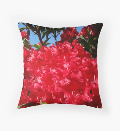 Red Rhododendrons Flowers Floral art prints Throw Pillow