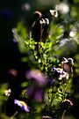 Blurring into one by Jocelyn  Parry-Jones