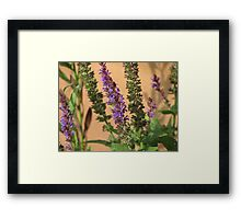 Blue Spikes Framed Print