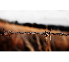 Barbed on a Hill Photographic Print