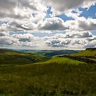 The Dales by John (Mike)  Dobson