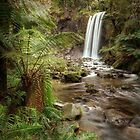 Hopetoun Falls by Scott Carr