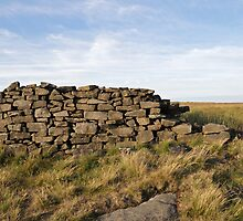 Peakland Dry Stone Wall by cofiant