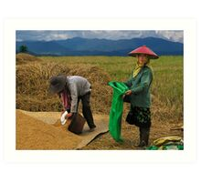 RICE WORKERS - BURMA Art Print