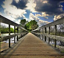 Bridge at Brazos Bend State Park by Savannah Gibbs