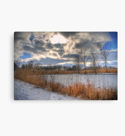 Cattail Cloudscape Canvas Print