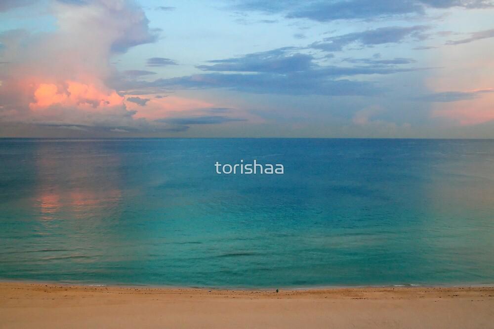 Beautiful sunset by torishaa