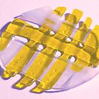Fused Glass Plate by Stephen D. Miller