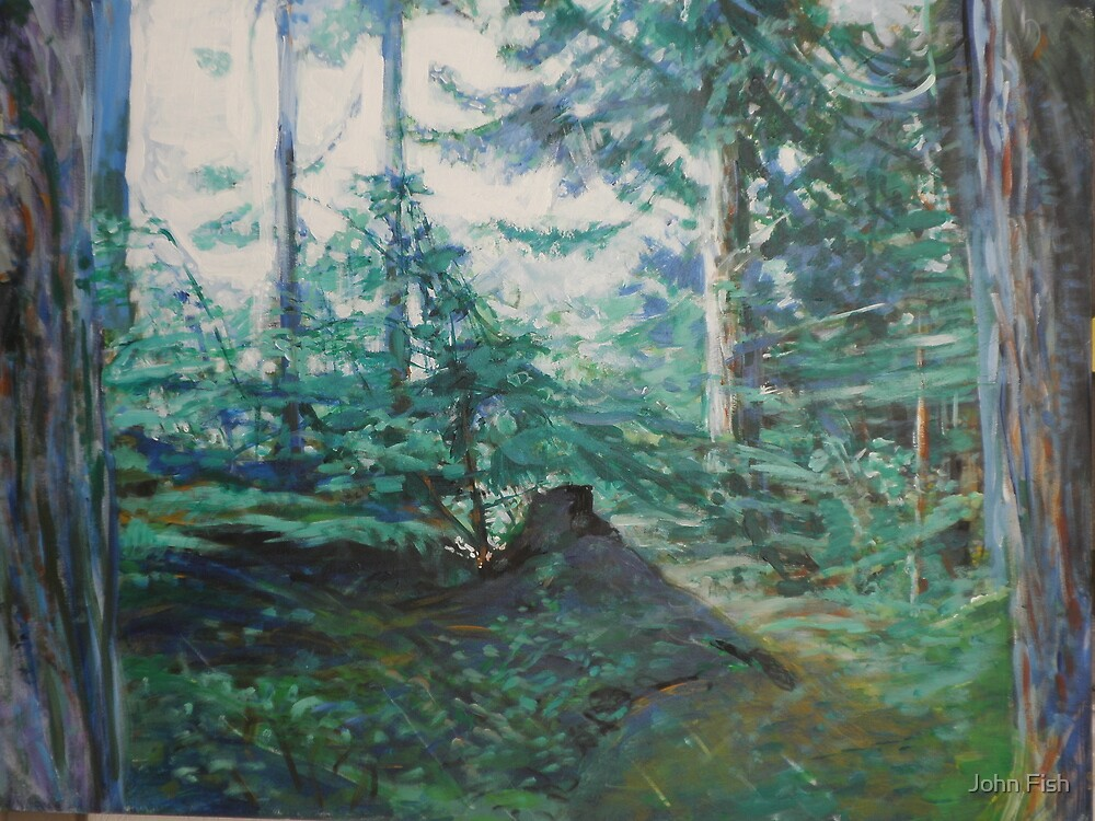 Hiking Trail by John Fish