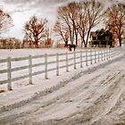 Winter Scene by DaraD