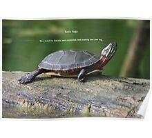 Turtle Yoga Poster