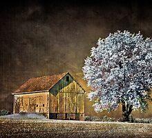 Barn Infrared by DaraD