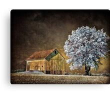 Barn Infrared Canvas Print