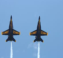 Blue Angles by Melissa  Tice