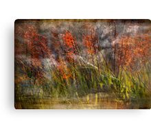 Misty Swamp Canvas Print
