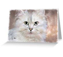 White Persian Cat Greeting Card