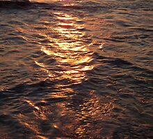 Sun in Shoalwater by kalaryder
