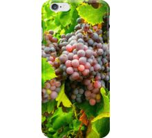 Bright Bunches of Grapes for Harvest iPhone Case/Skin