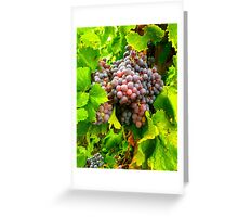 Bright Bunches of Grapes for Harvest Greeting Card
