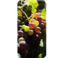 Grenache Grapes iPhone Case/Skin