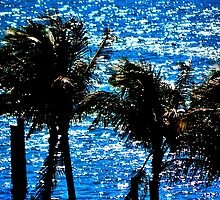 Tropical Shimmer by Rene  Triay