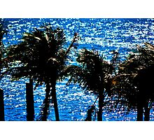 Tropical Shimmer Photographic Print