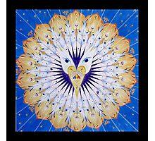 Bodhi Mandala Photographic Print