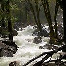 Bridal Falls Stream by RoySorenson