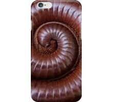 A Curled Giant African Train Millipede iPhone Case/Skin