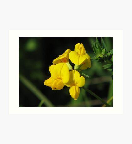 Bright Yellow Art Print